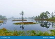 Landscape Royalty Free Stock - 31061655