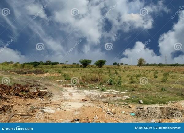 landscape in summer hot weather