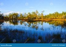 Landscape Royalty Free Stock - 32366129