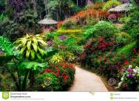 Landscaped Colorful And Peaceful Flower Garden In Blossom ...