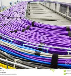 large group of lilac utp cables [ 1300 x 937 Pixel ]