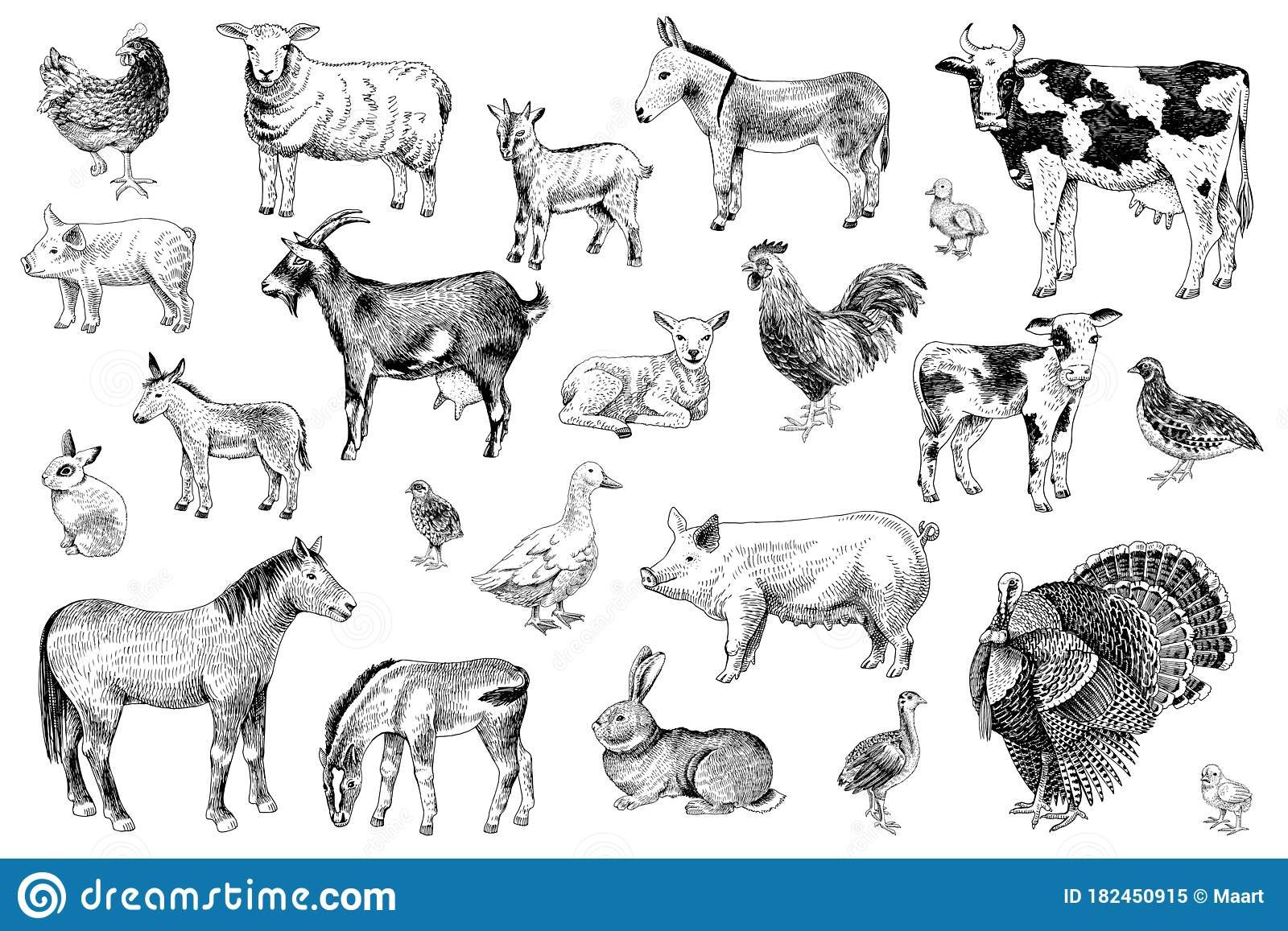 Large Set Of Farm Animals With Their Babies Stock Vector