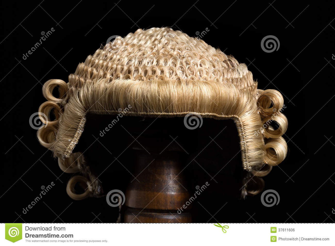 lawyer s wig front