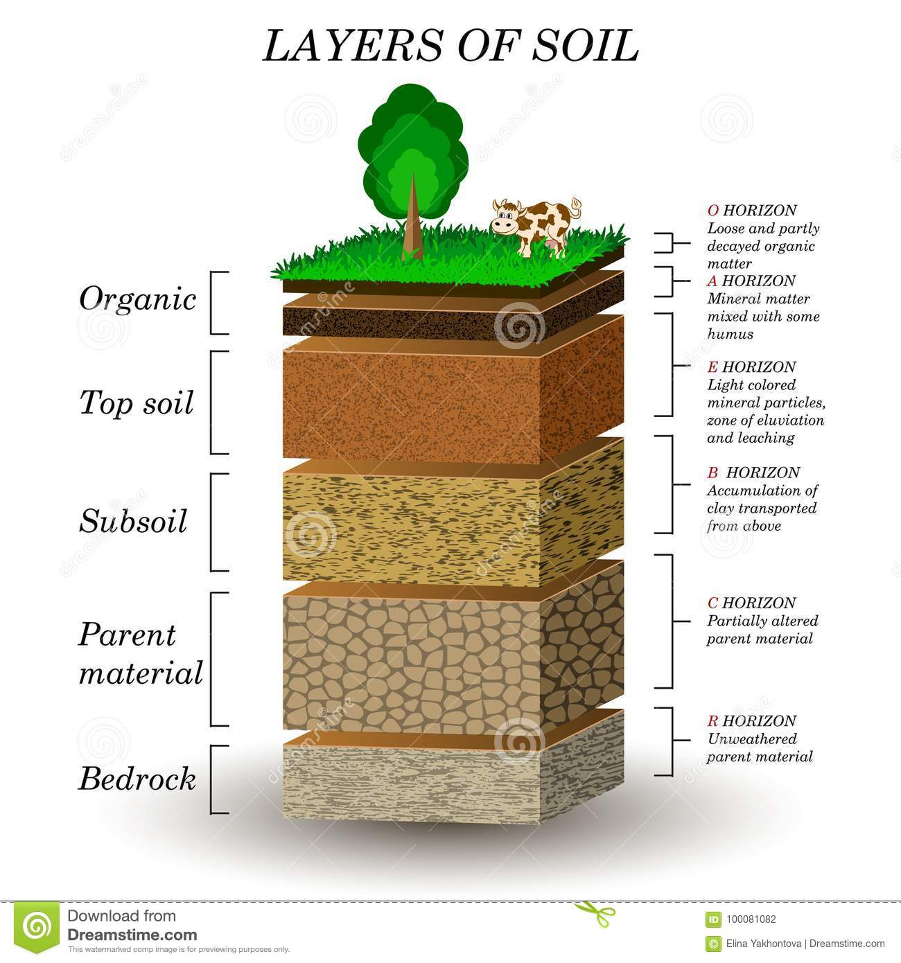 labelled diagram of soil profile whirlpool ultimate care ii washer wiring layers education mineral particles sand