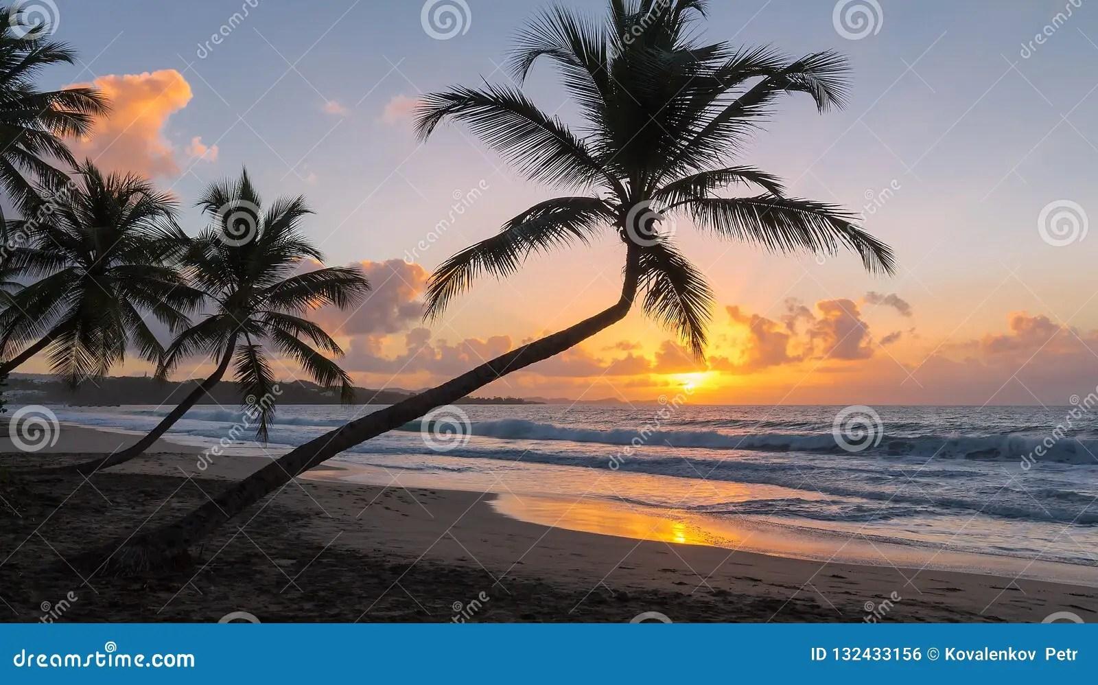 le coucher du soleil sur l ile de la