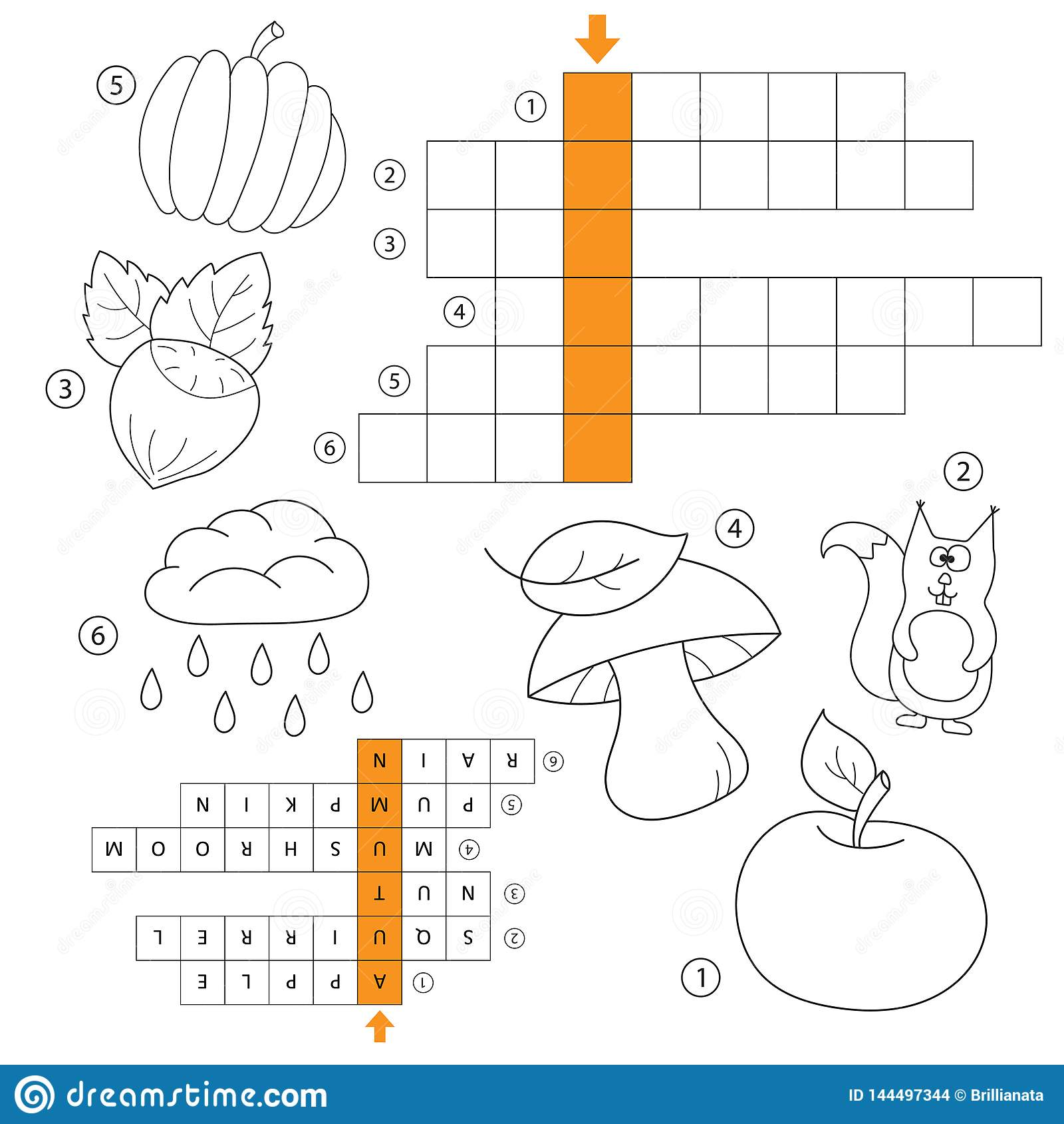 hight resolution of learn english autumn word game for kids vector crossword for kids task and answer coloring book for children of preschool and school age