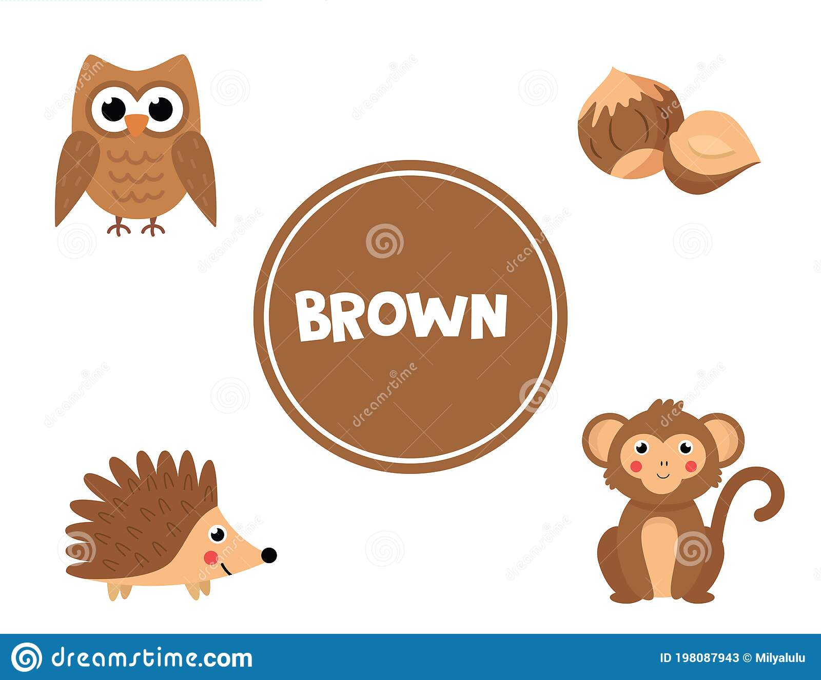 Learning Brown Color For Preschool Kids Educational