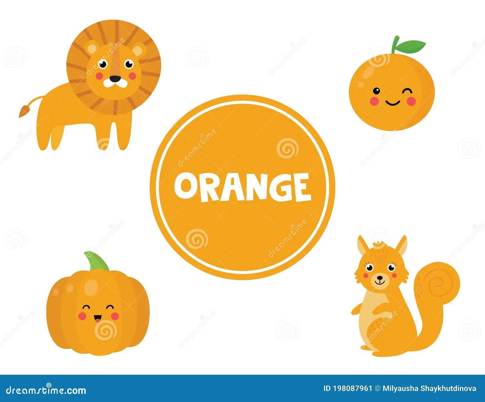 Learning Orange Color For Preschool Kids Educational