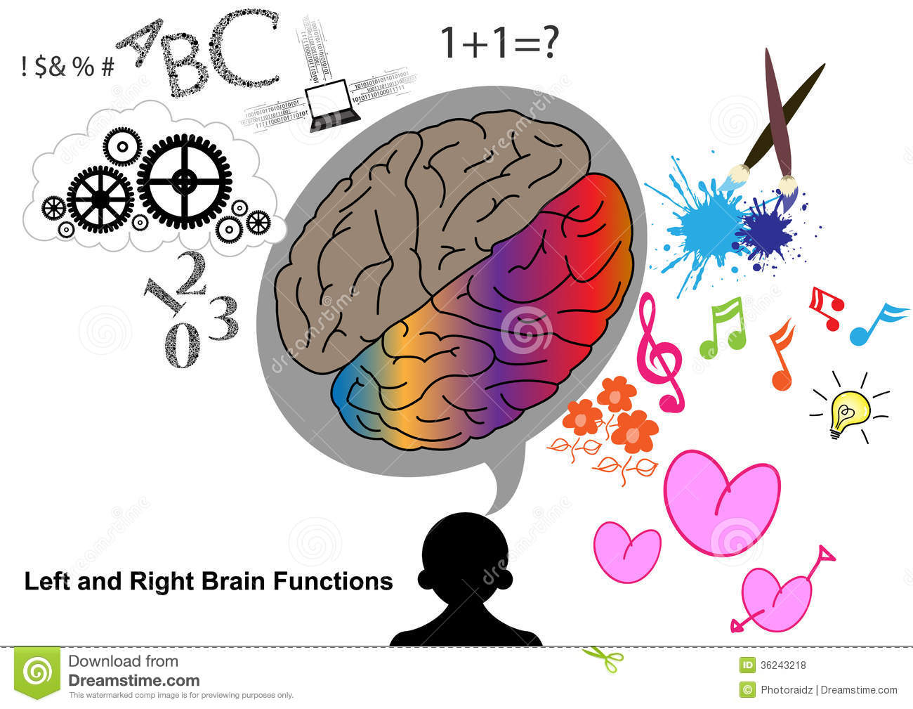 left side brain functions diagram 24 volt transformer wiring and right function stock vector illustration
