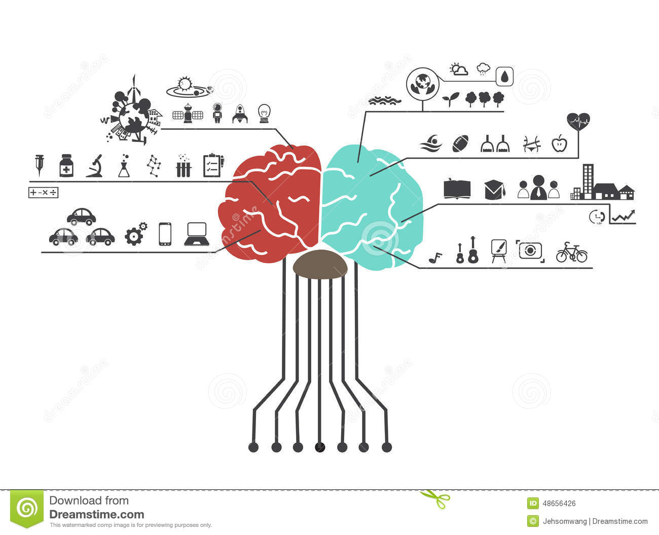 left side brain functions diagram wiring for bathroom fan with timer and right icon stock vector image