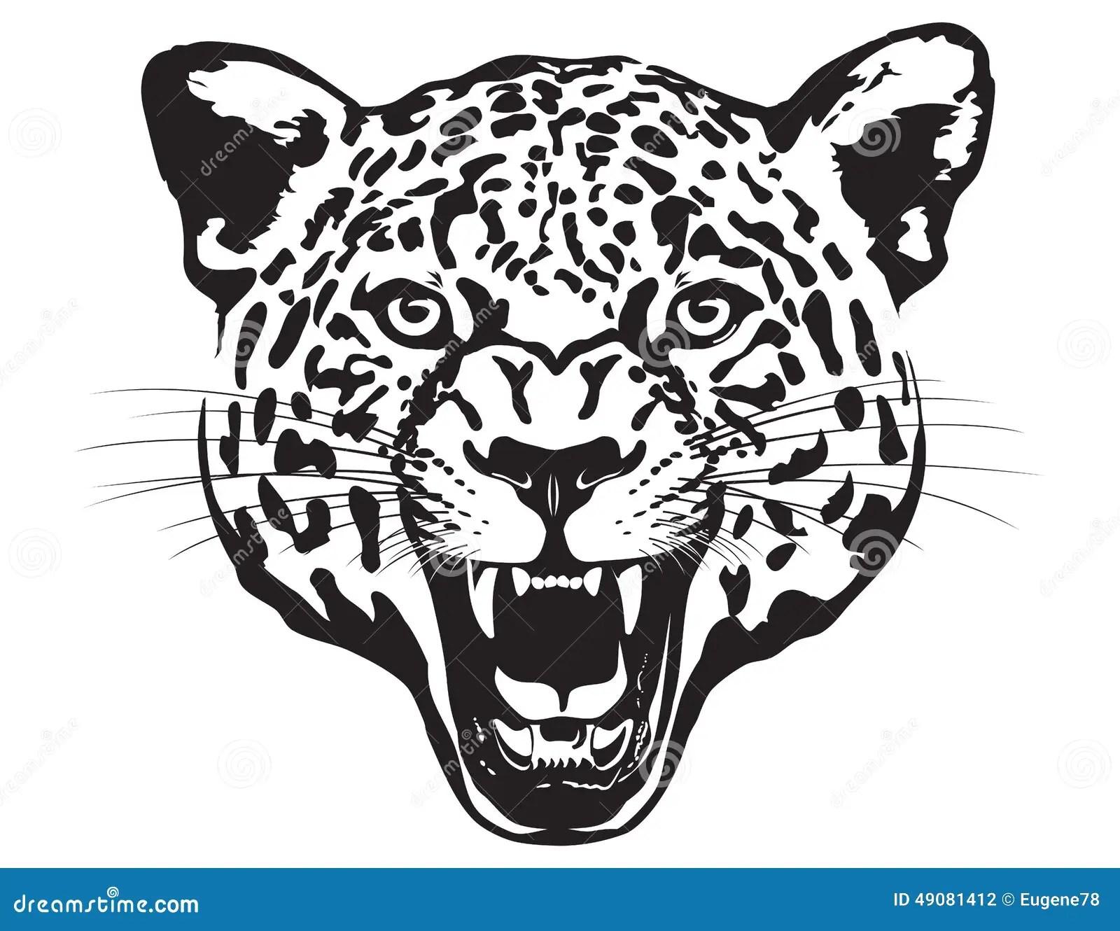 Leopard Head Illustration Stock Vector