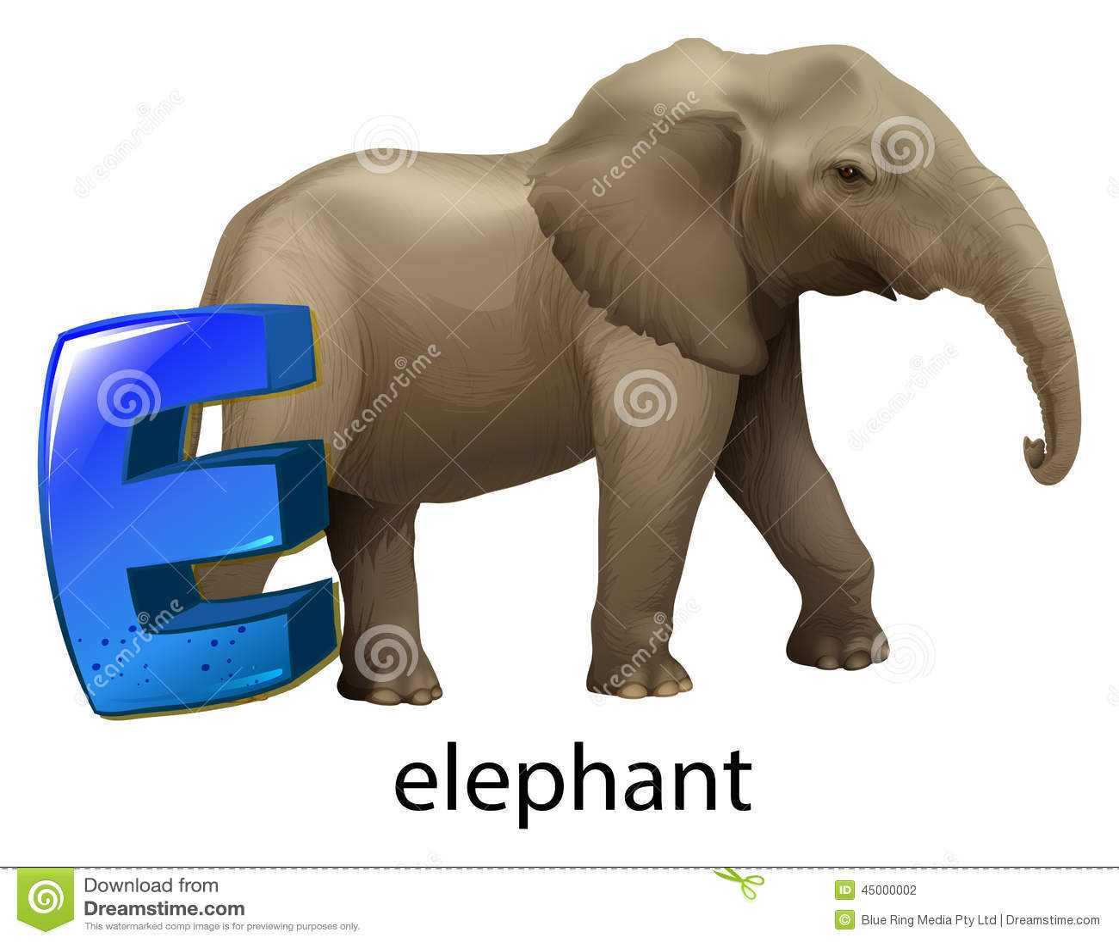 A Letter E For Elephant Stock Vector