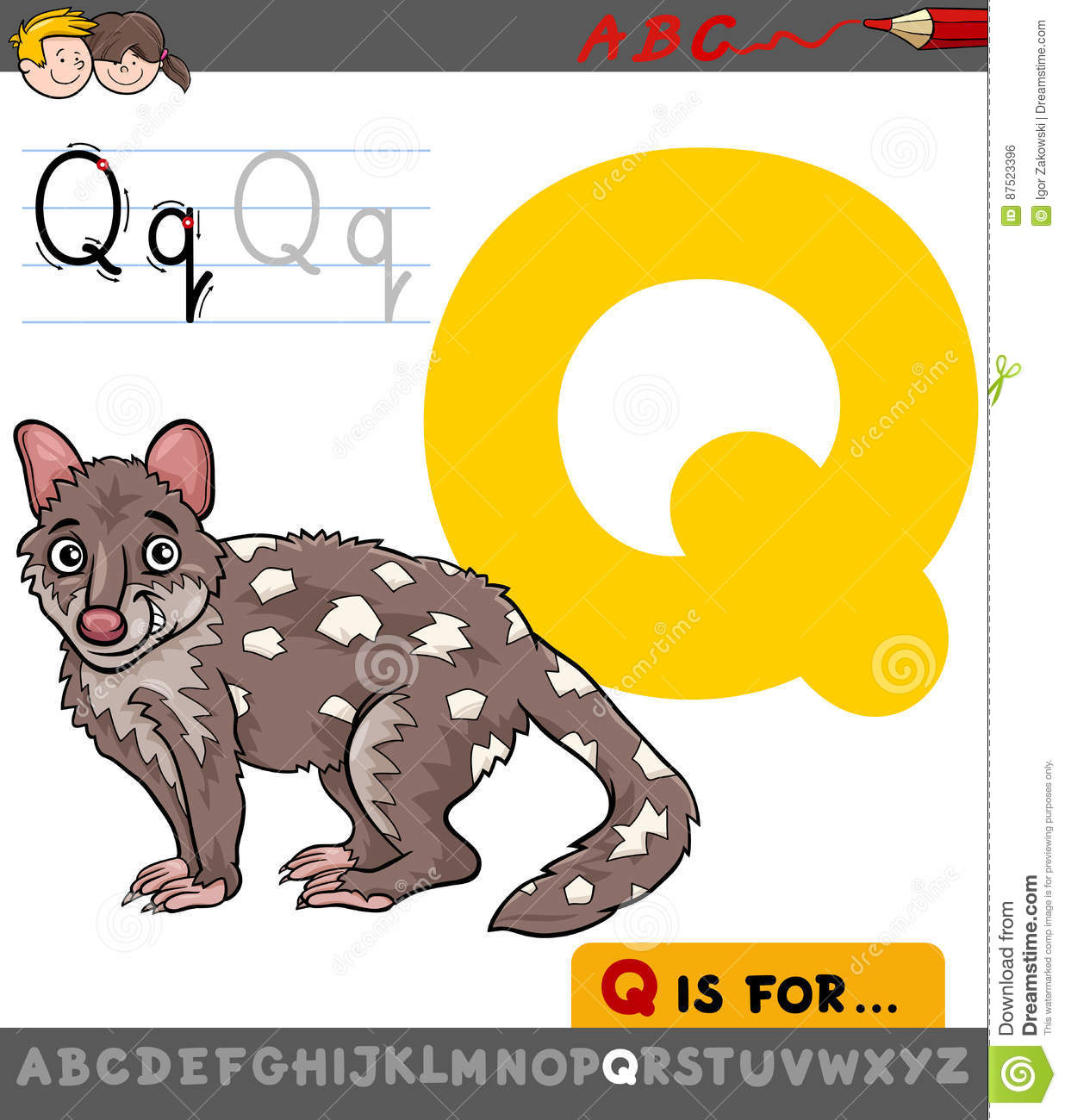 Letter Q With Cartoon Quoll Vector Illustration