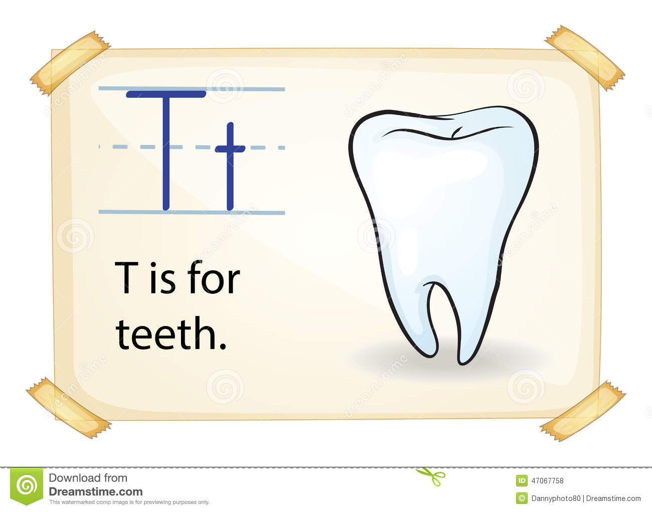 A Letter T For Tooth Stock Vector