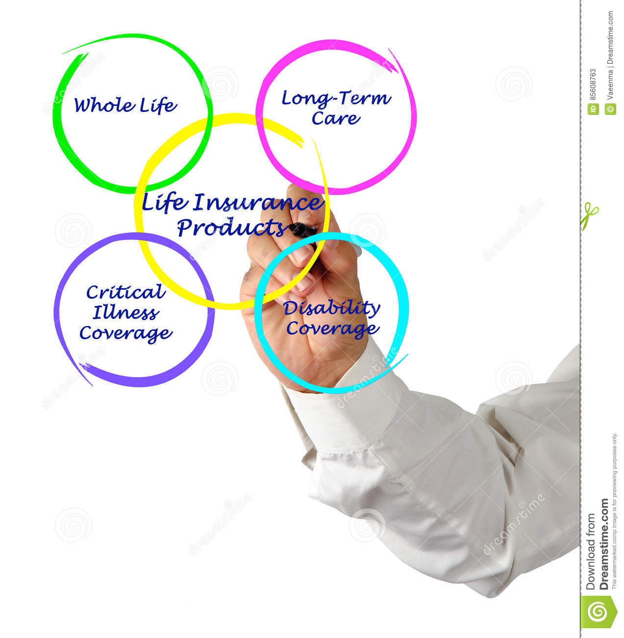 hight resolution of presenting diagram of life insurance products