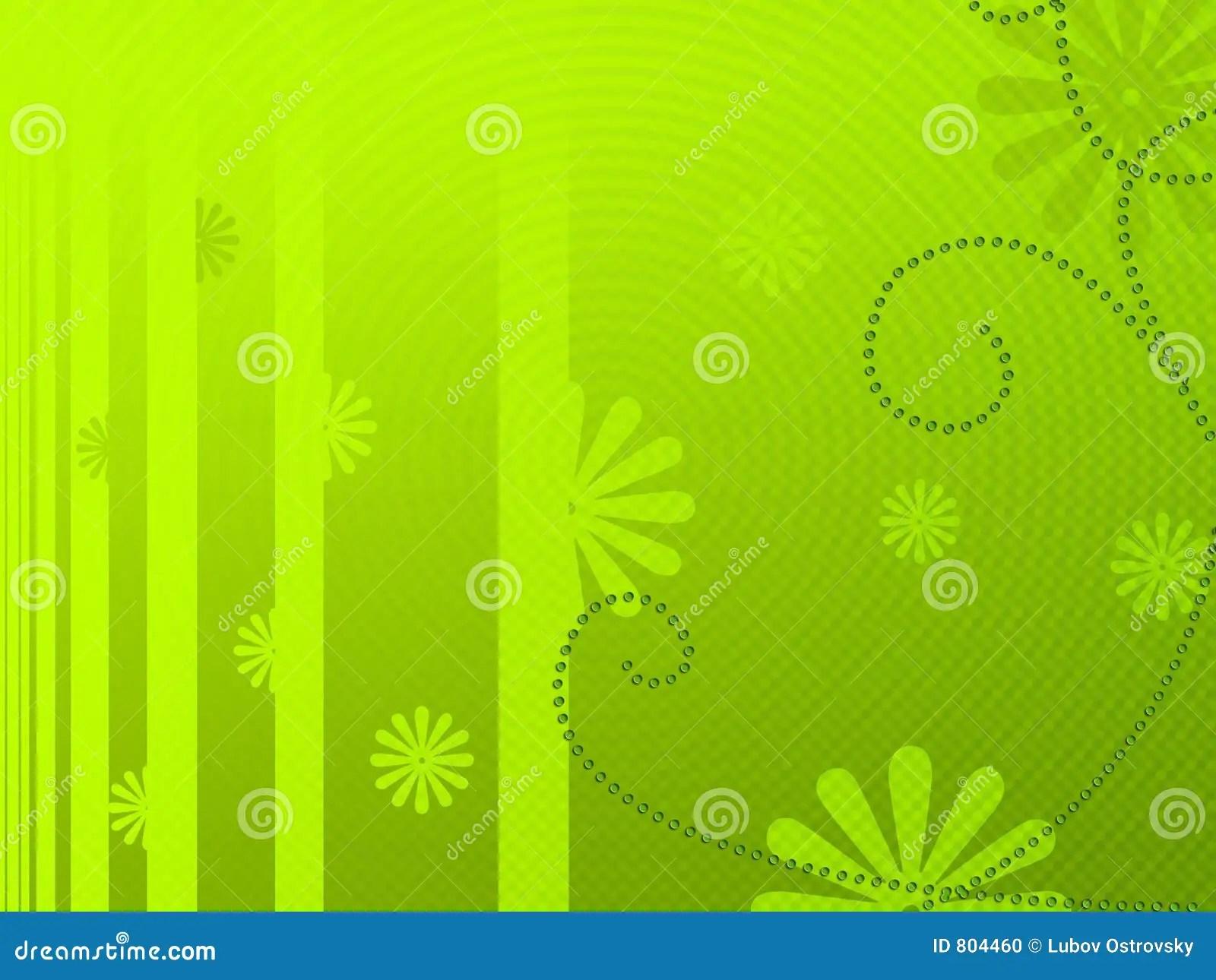 Light Green Floral Background Stock Illustration  Image