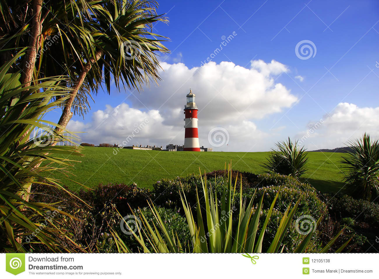 Lighthouse With Palm Tree Plymouth Uk Stock Photo
