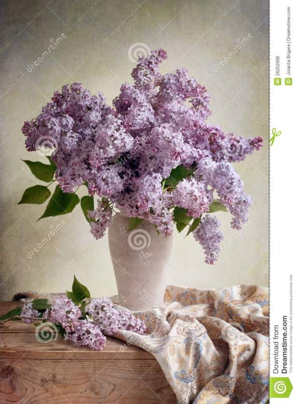 Lilac Bouquet Royalty Free Stock - 26252996