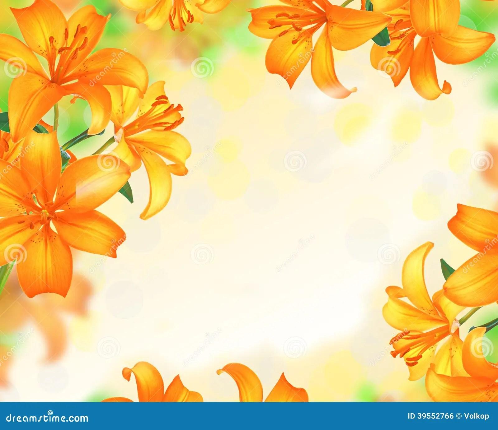 Lily Flowers Border Design Stock Photo