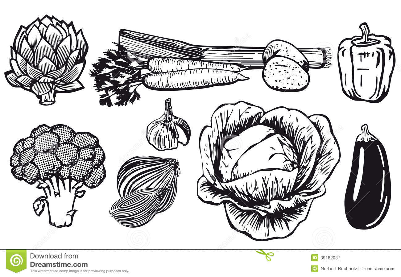 Line Drawing Of Assorted Vegetables Stock Vector