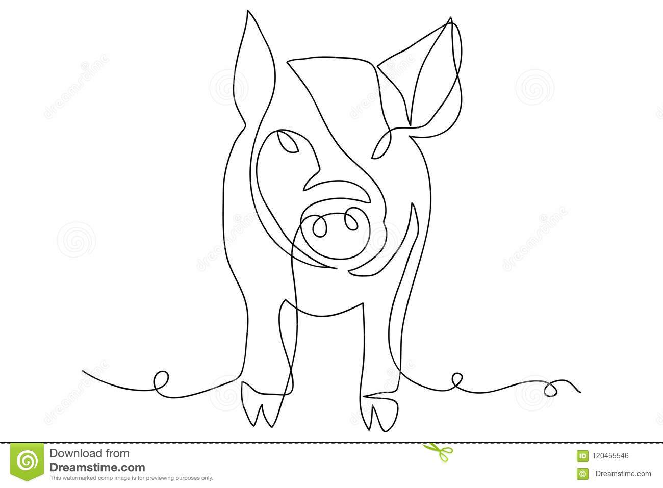 Line Drawing Of A Cute Pig Year Of Pig Linear Style And