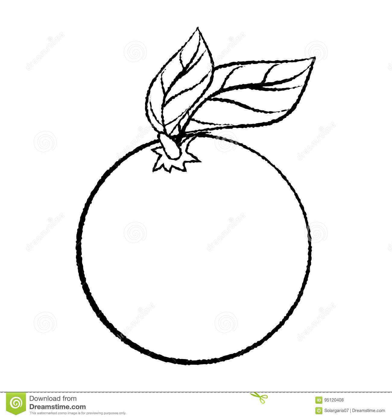Line Drawing Of Orange With Leave Simple Line Vector