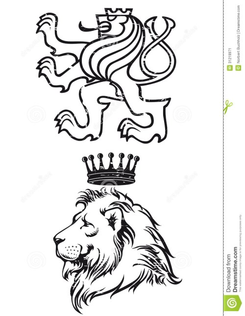 small resolution of lion illustration stock image