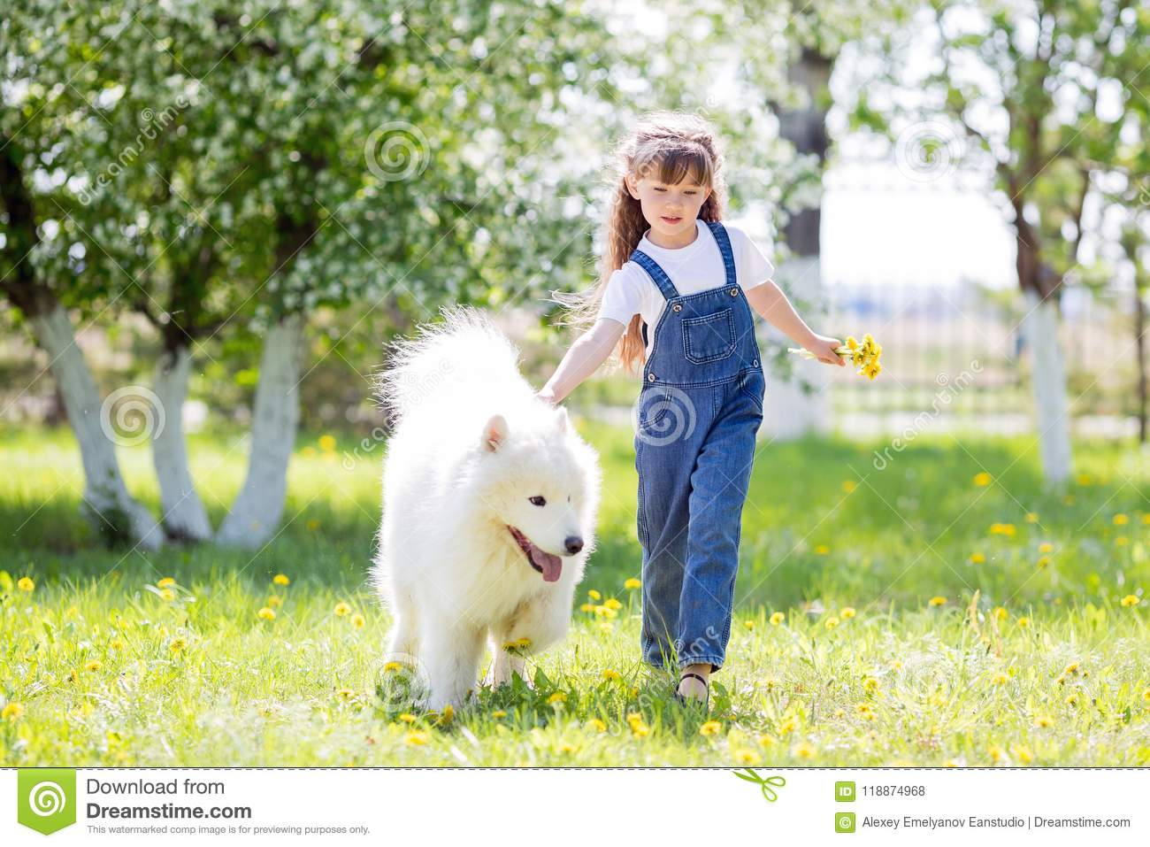 A Beautiful 5 Year Old Girl In Jeans Hugs Her Favorite Dog During A Summer Walk