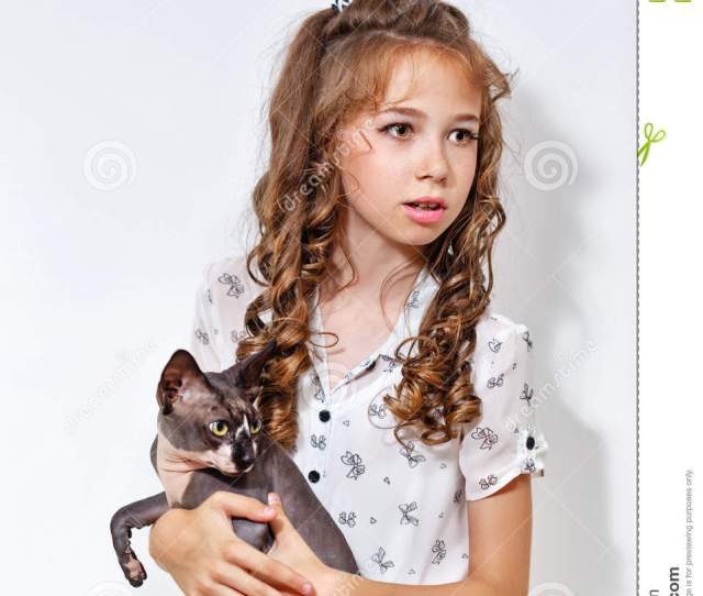 Stock Photo Little Girl And Sphinx Cat