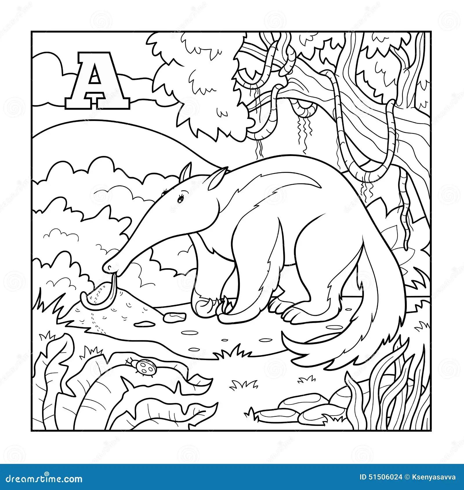 Livre De Coloriage Fourmilier Illustration Sans Couleur
