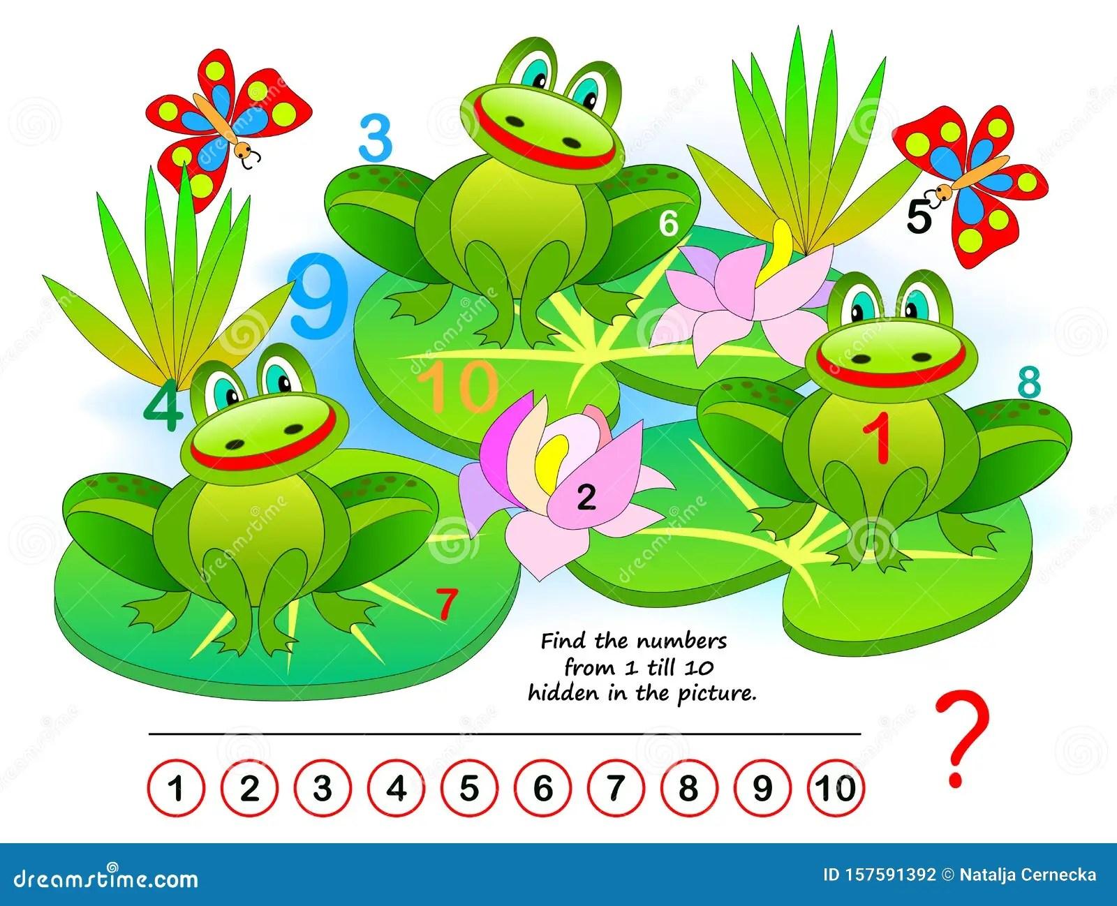 Hidden Frog Vector Illustration