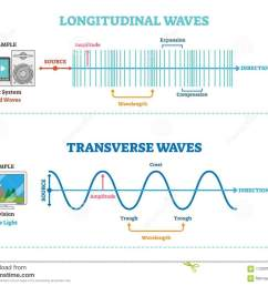 longitudinal and transverse wave type vector illustration scientific diagram sonic and visual perception principle [ 1300 x 1048 Pixel ]