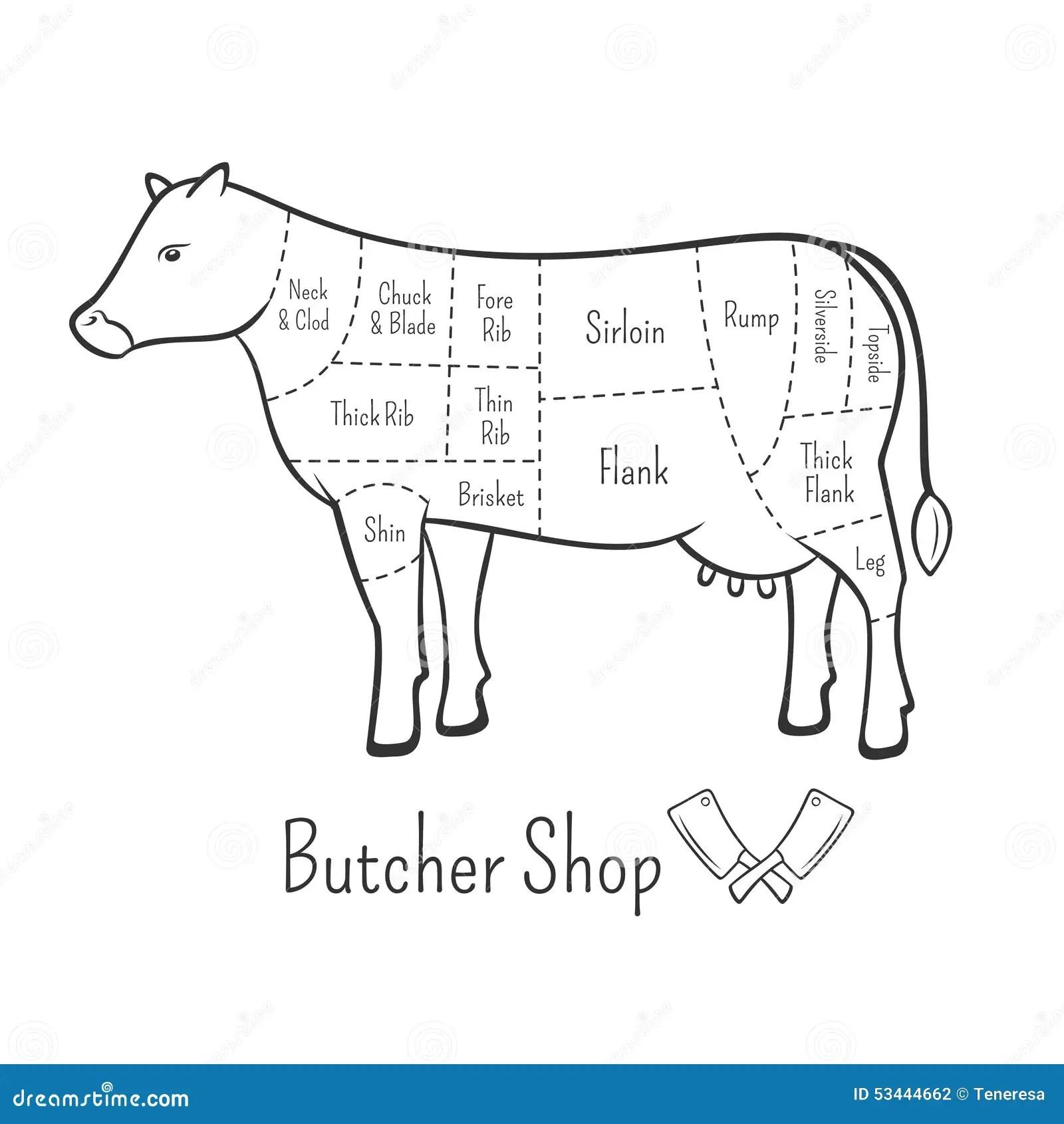 Los Cortes Britanicos Del Diagrama Y De La Carniceria De