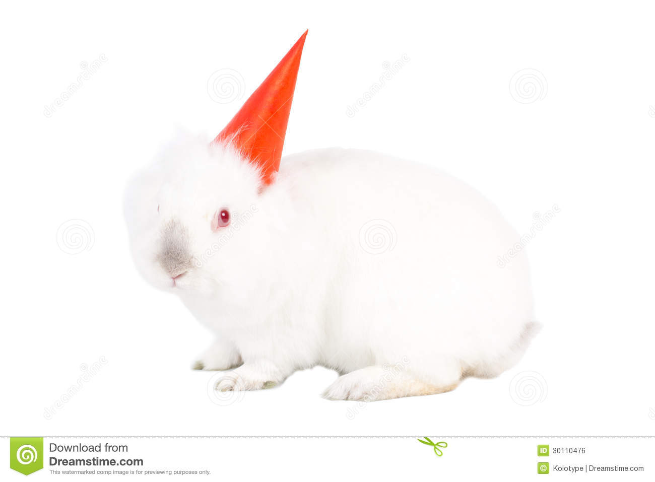 Lovable White Bunny Rabbit In A Party Hat Royalty Free Stock Image