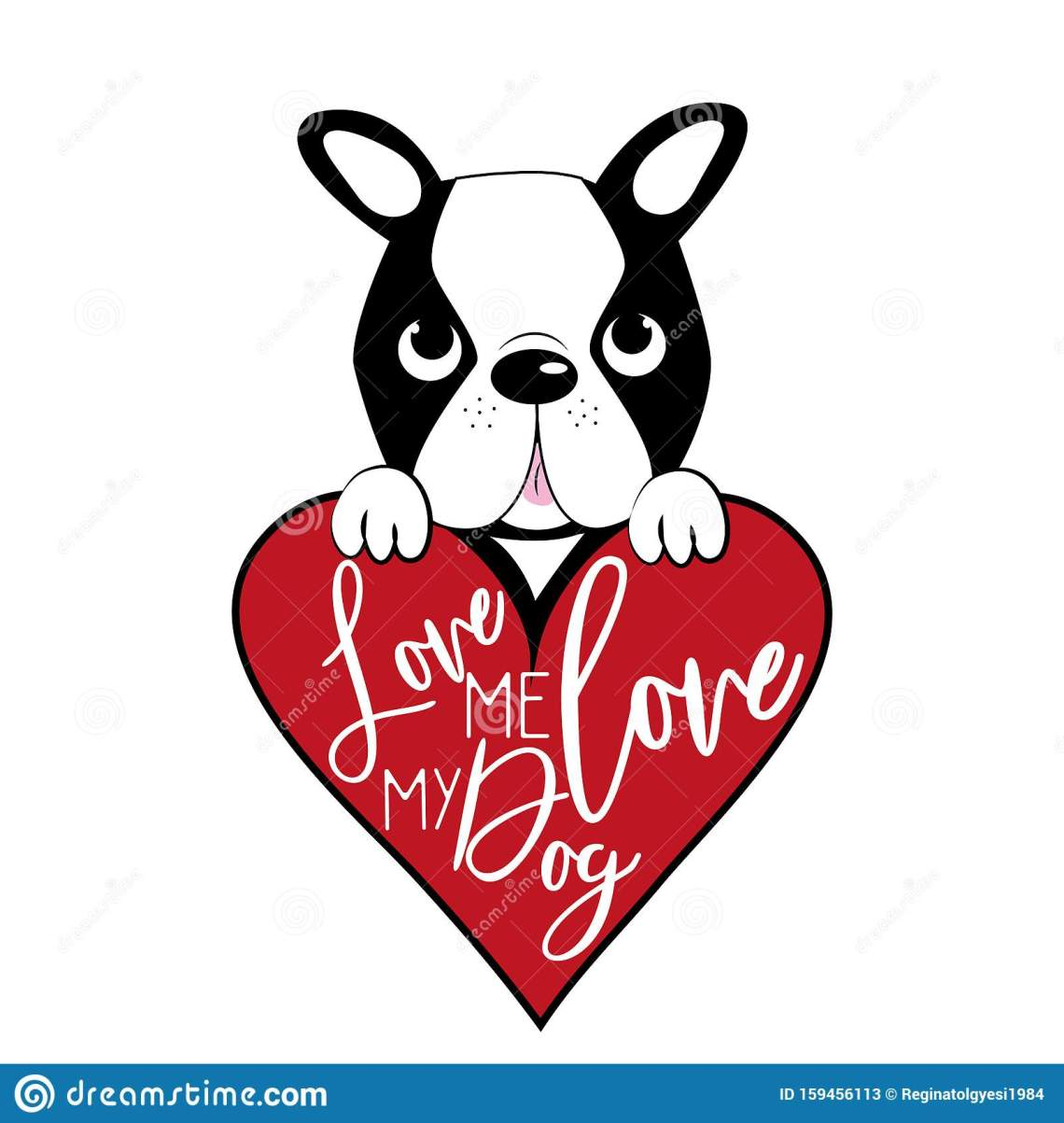 Download Love Me Love My Dog, Funny Saying Text, And Boston Terrier ...