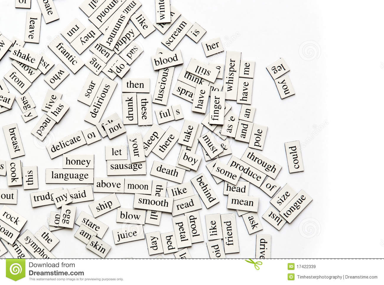 Magnetic Poetry Words English Grammar Royalty Free Stock