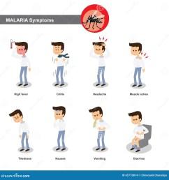 malaria symptoms such as high fever chills headache muscle pain tiredness nausea diarrhea etc [ 1300 x 1390 Pixel ]