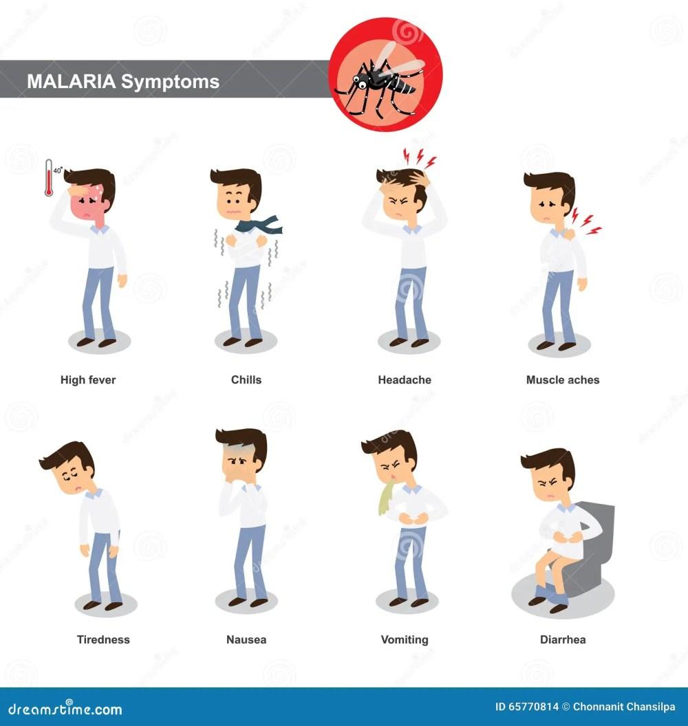 medium resolution of malaria symptoms such as high fever chills headache muscle pain tiredness nausea diarrhea etc