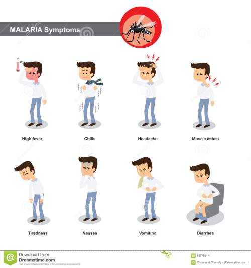 small resolution of malaria symptoms such as high fever chills headache muscle pain tiredness nausea diarrhea etc