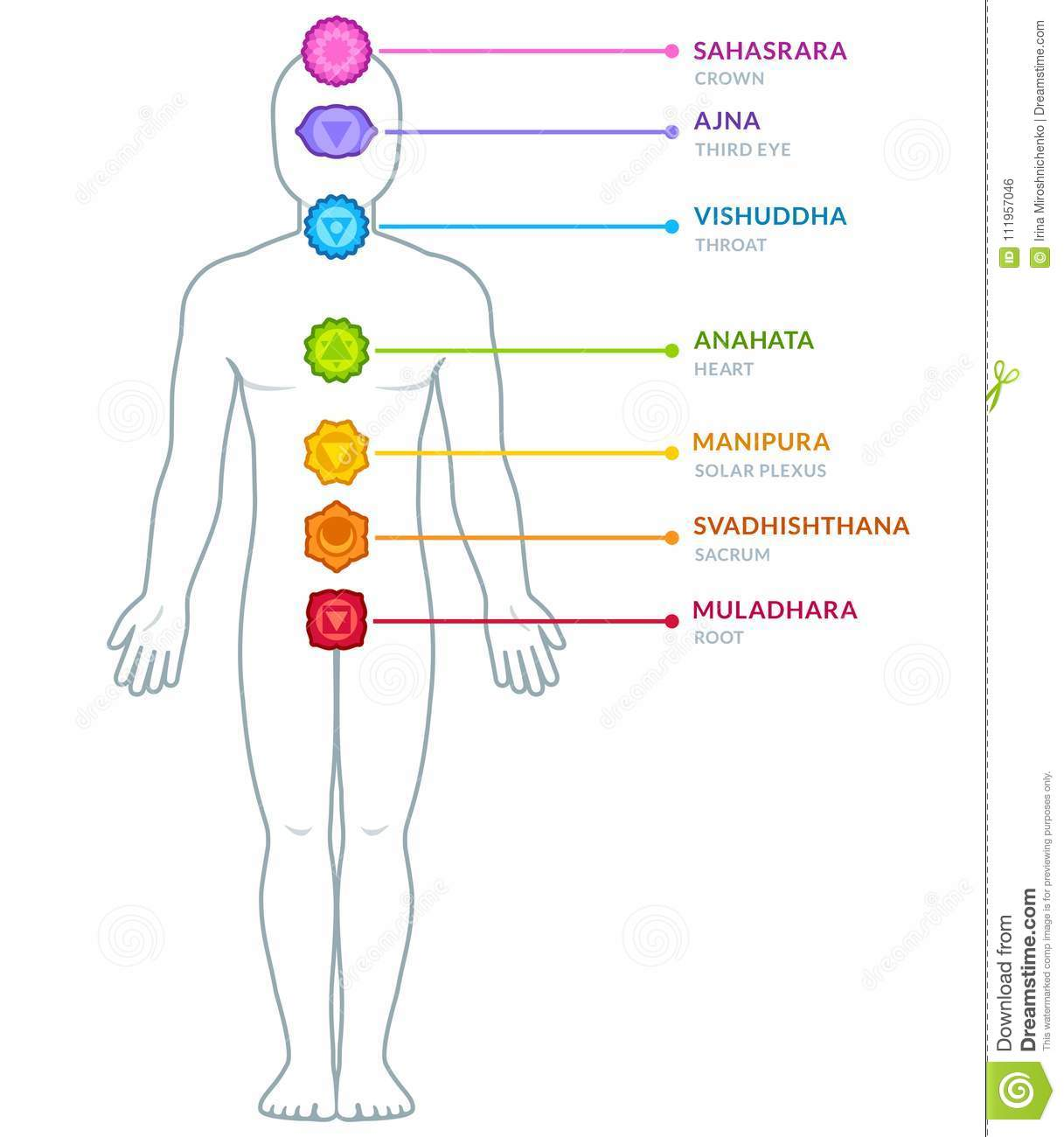 hight resolution of full body male figure with chakras infographics chakra symbols and captions on separate layers isolated vector illustration