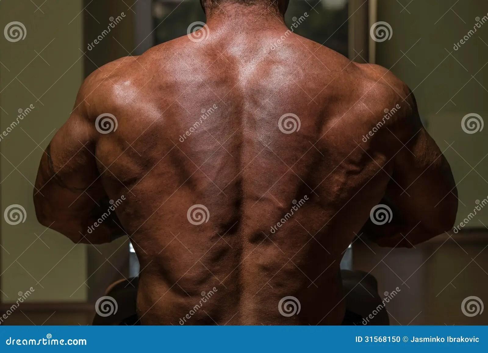 Male Bodybuilder Flexing His Back Stock Photo