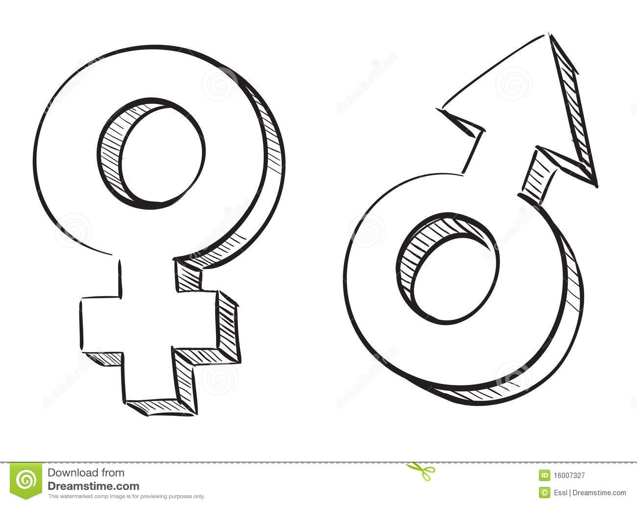 Male and female symbols stock vector. Image of human