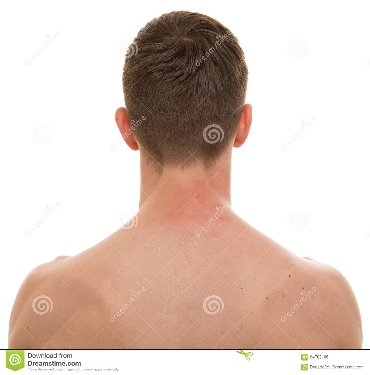 Male Neck Back Isolated On White REAL Anatomy Stock
