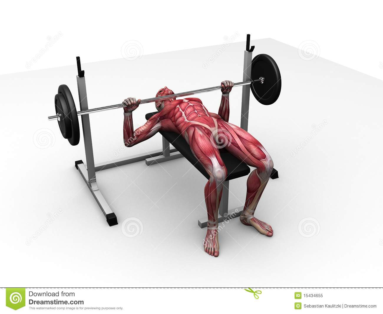 gym bench press chair massage portable male workout stock illustration image of