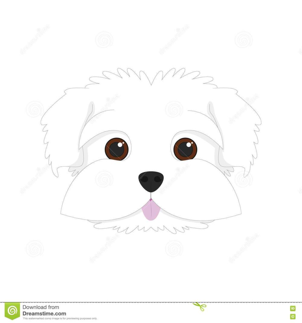 medium resolution of maltese dog vector illustration maltese dog on white background vector illustration royalty free illustration