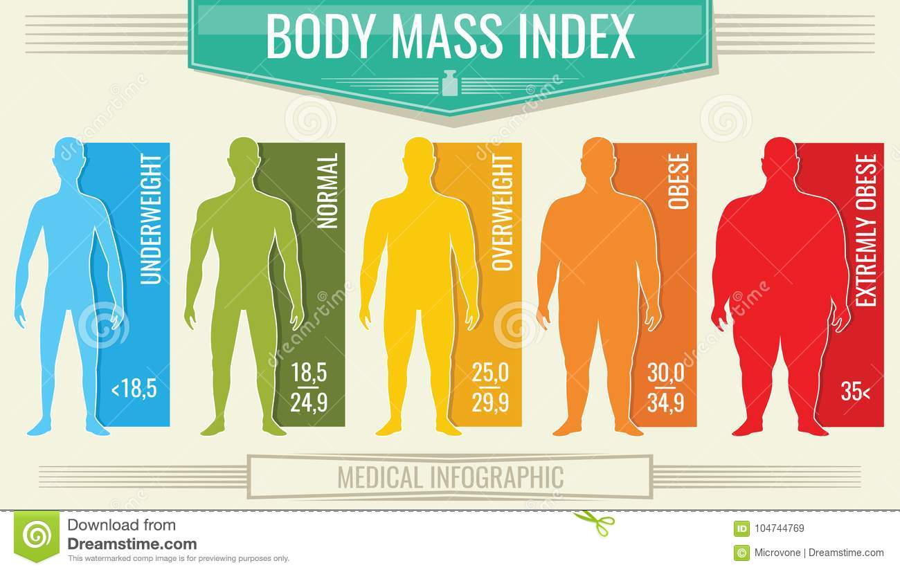 Man Body Mass Index Vector Fitness Bmi Chart With Male
