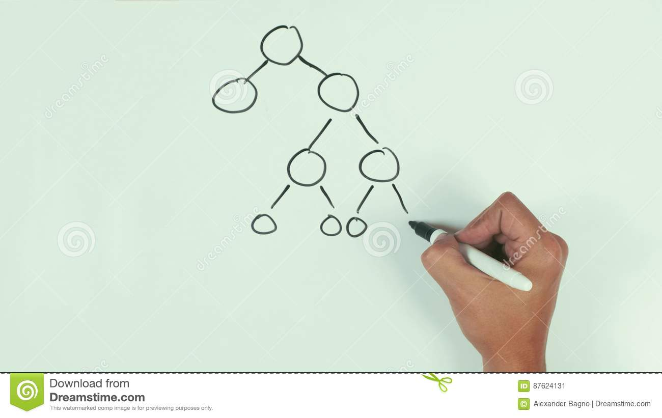 hight resolution of man hand speed draw branching diagram binar mlm with black marker pen on whiteboard stock video video of presentation capsule 87624131