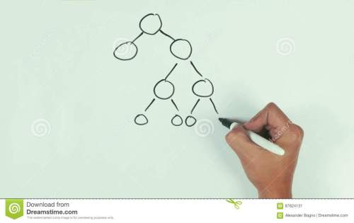 small resolution of man hand speed draw branching diagram binar mlm with black marker pen on whiteboard stock video video of presentation capsule 87624131