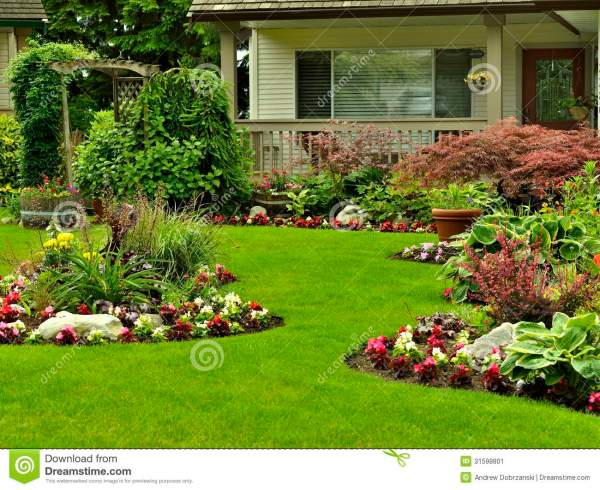residential front yard landscape