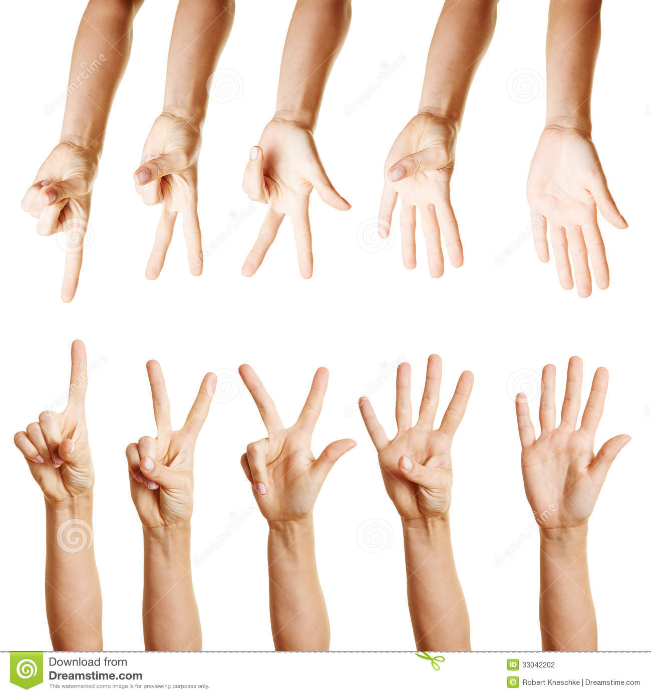 Many Hands Counting From One To Five Stock Photo